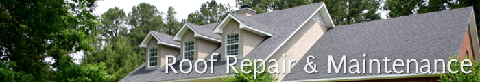 Roofing Services in MI, including Troy, Macomb & Rochester.